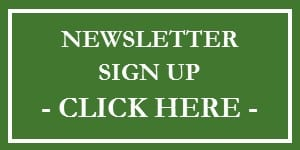 tax and financial tips newsletter sign up button | tax & financial tips | Dalby Wendland & Co. | CPAs | Business Advisors | Grand Junction CO | Glenwood Springs CO | Montrose CO